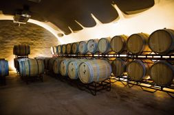 021. Wijn uit de Algarve 04